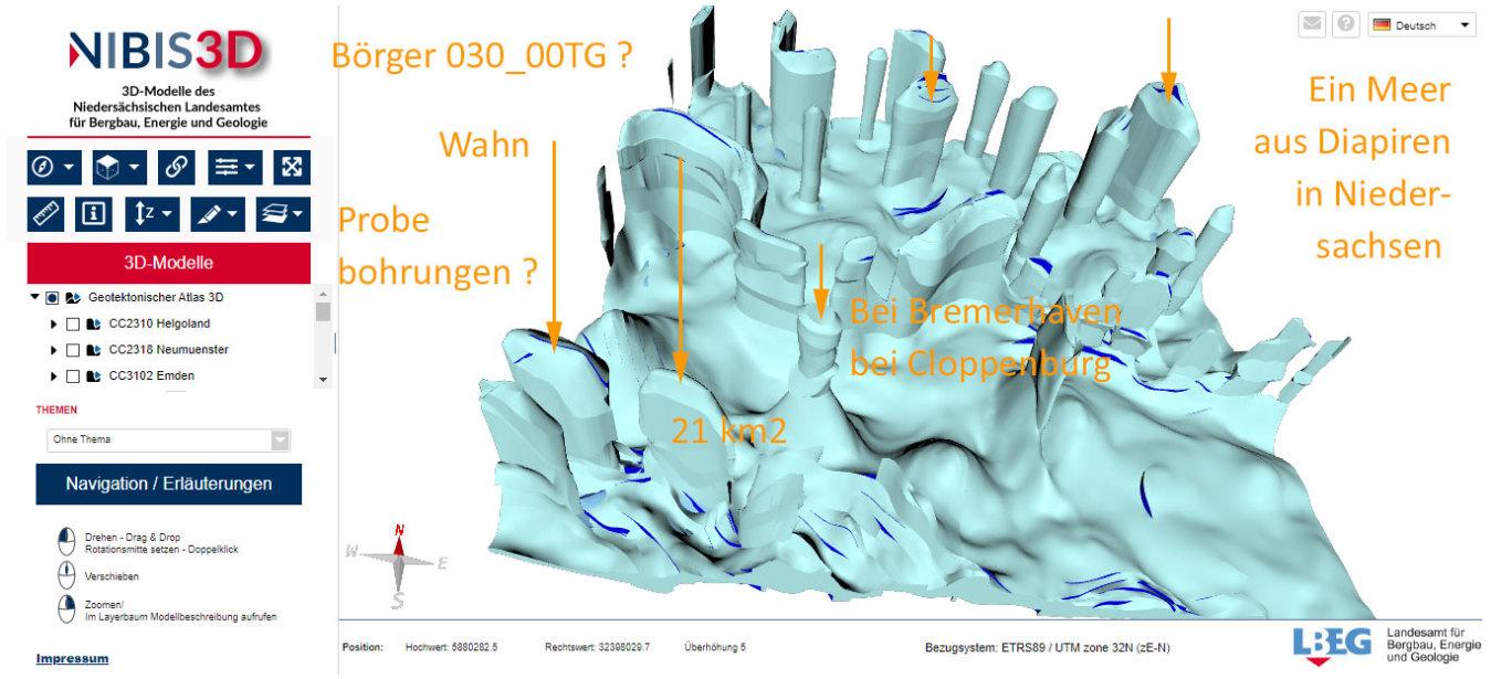 Darstellung Zechsteinmeer-Salz - Bett mit Diapiren - LEBG Nibis