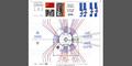 Ausschnitt aus der 6.400 % zoomfähigen Ausführungs-Planung DBHD Endlager